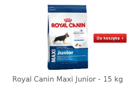 Dobra karma dla psów młodych dużych Maxi Junior