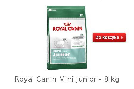 Dobra karma dla małych szczeniaków Mini Junior